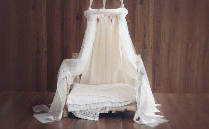 Newborn Canopy Photo Prop